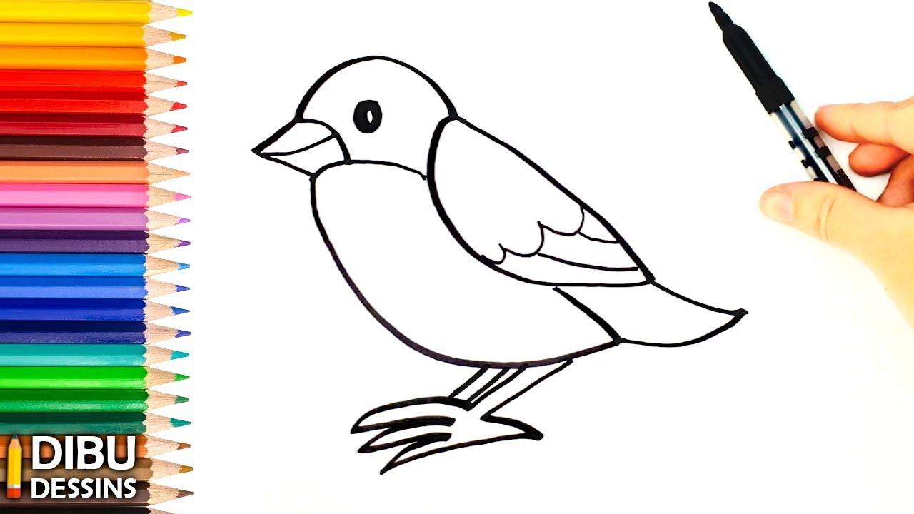 comment dessiner oiseau - Les dessins et coloriage